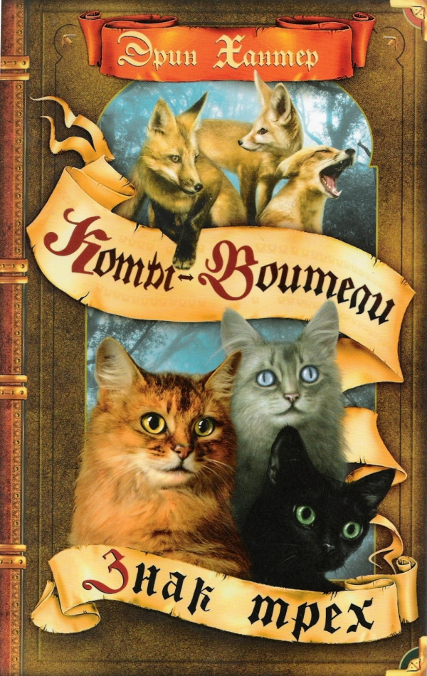 http://www.cat-warriors.narod.ru/books/13.jpg