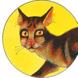 http://www.cat-warriors.narod.ru/scannings/russian_pic/soc/circles/15.png