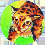 http://www.cat-warriors.narod.ru/scannings/russian_pic/soc/circles/20.png
